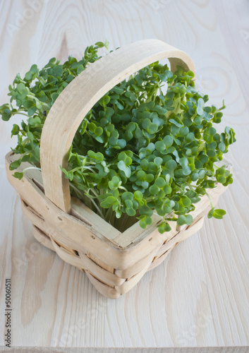 Watercress, healthy eating, spring, kitchen table.