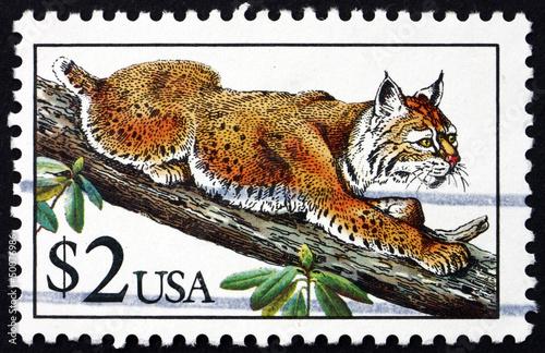 Postage stamp USA 1990 Bobcat, Lynx Rufus