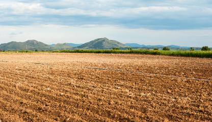 Sardegna, terreni arati