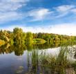 summer scene on river