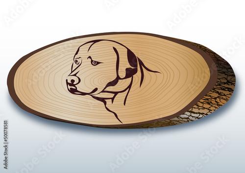 Elips şeklinde kesilmiş  ağaç üzerinde köpek başı