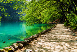 Path near a forest lake with fish in Plitvice Lakes National Par