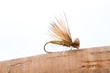 Fly Fishing Dry Fly Caddis