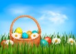 Easter background. Easter eggs and flower with basket in the gra