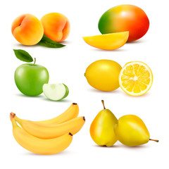 Big set of fresh fruit. Vector