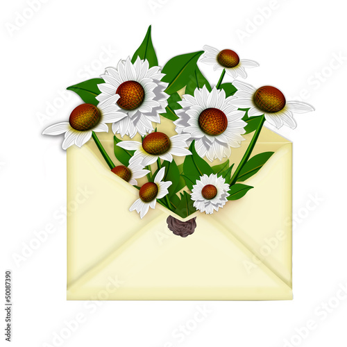 Chamomile flowers in the mail envelope