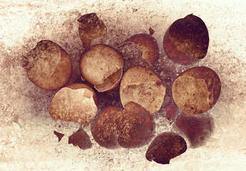 grunge broken egg shells