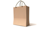 Shopping Bag Paper Perspective