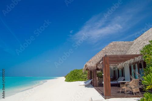 Beach - Maldives - 50101320