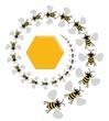 Bee Spiral