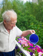 Senior Man Watering Flowers