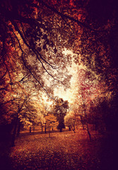 grungy park