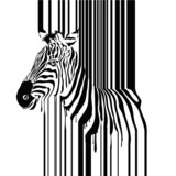Zebra barcode vector illustration