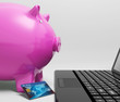 Piggy At Computer Shows Saving On line