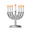 Постер, плакат: Hanukkah and all things related