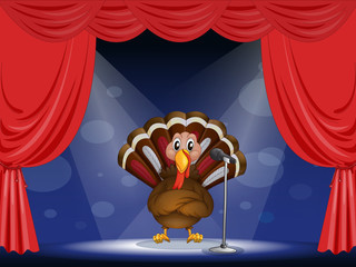 A show with a turkey