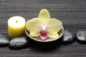 Yellow orchid flower in bowl and candle on zen pebble