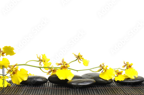spa concept-branch orchid laying on zen stones on mat