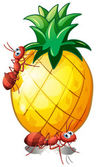 Two ants in a pineapple fruit