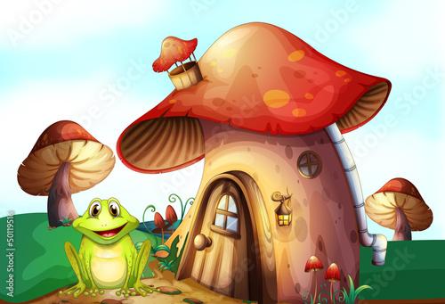 Fotobehang Magische wereld A green frog near a mushroom house