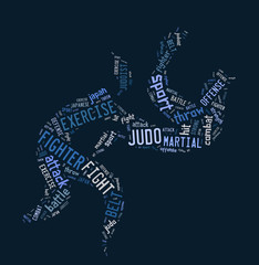 Judo pictogram on blue background