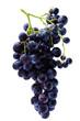 grappe de raisin muscat noir à petits grains