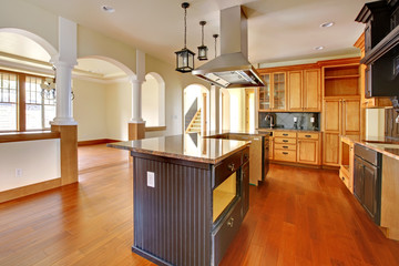 New construction luxury home interior. Kitchen.