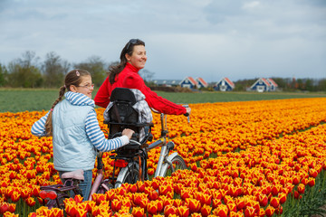 Family on bikes in spring flower fields