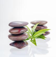 Evenwichtige rode Zen stenen en lucky bamboo bladeren