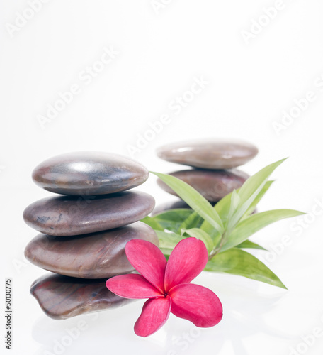 Red frangipani flowers and bamboo leaves with balanced stones