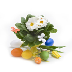 Easter eggs and spring flowers isolated on white