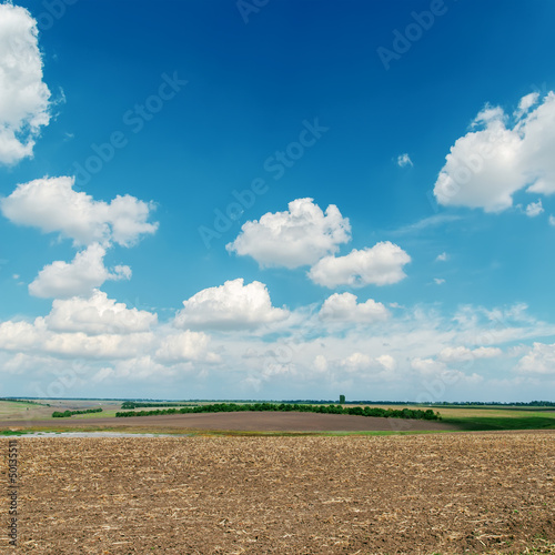 black plowed field under blue sky with white clouds