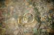 Golden Wedding Rings on a Stone