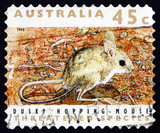Postage stamp Australia 1992 Dusky Hopping Mouse, Rodent poster