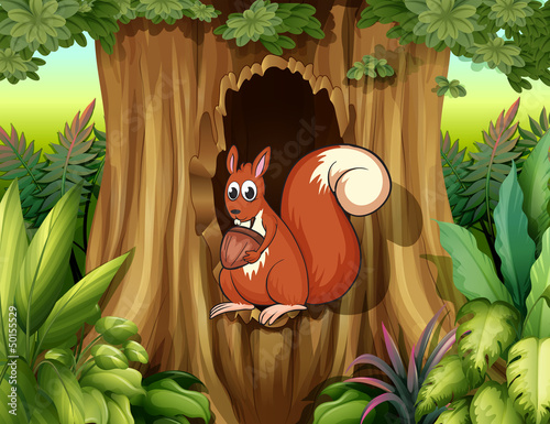A squirrel in a hollow holding a nut