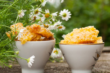 A delicious Honey comb and daisies