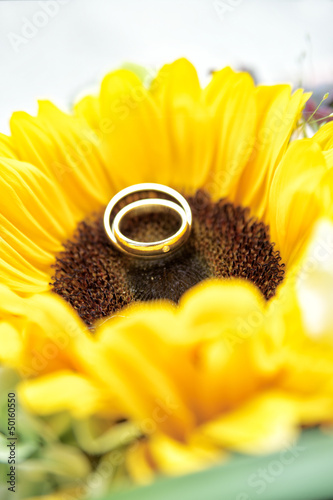 Wedding Rings on Sun Flower