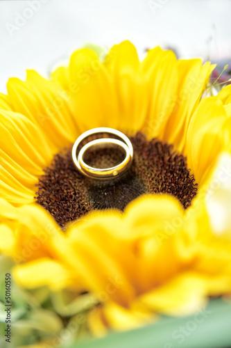 Wedding Rings on Sun Flower