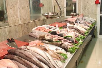expositor de pescado 2