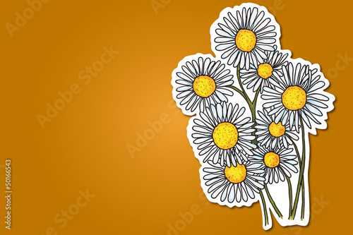 abstract background with camomile flowers