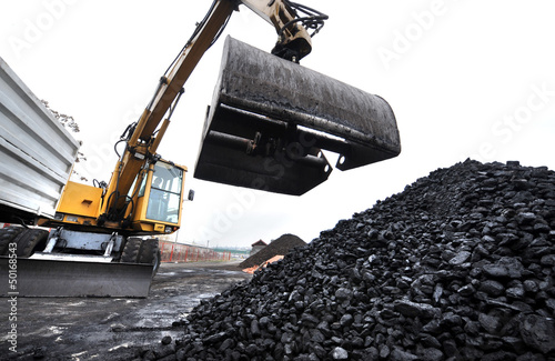 coal5 - 50168543