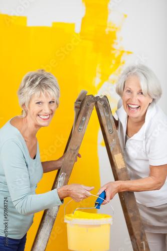 zwei seniorinnen streichen zusammen die wohnung