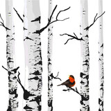 Fototapety Bird of birches, vector drawing with editable elements.