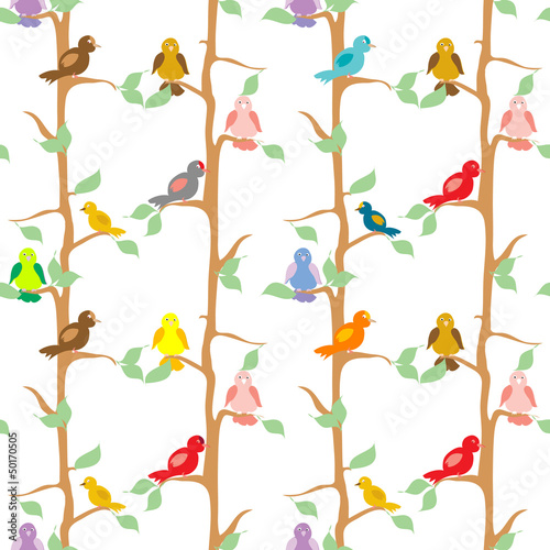Fototapeta Color Birds seamless pattern