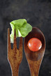 Wooden fork and spoon with lettuce and tomato