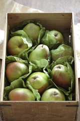Fresh pears in wooden crate