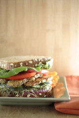 Close up of tempeh soy sandwich