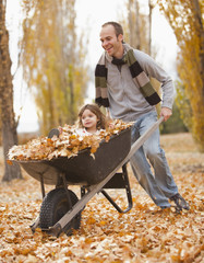 Caucasian father pushing daughter and autumn leaves in wheelbarrow
