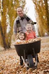 Caucasian father pushing daughters and autumn leaves in wheelbarrow