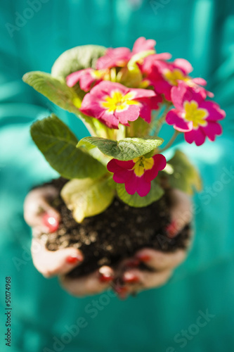 Woman holding blooming flowers